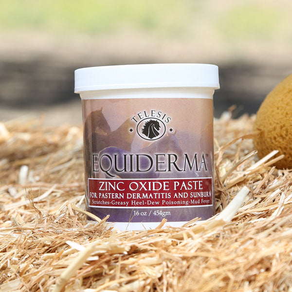 Equiderma:  Zinc Oxide Paste for Pastern Dermatitis & Sunburn For Horses - Equiderma | Natural Horse Care | Pet Care Products  - Equiderma