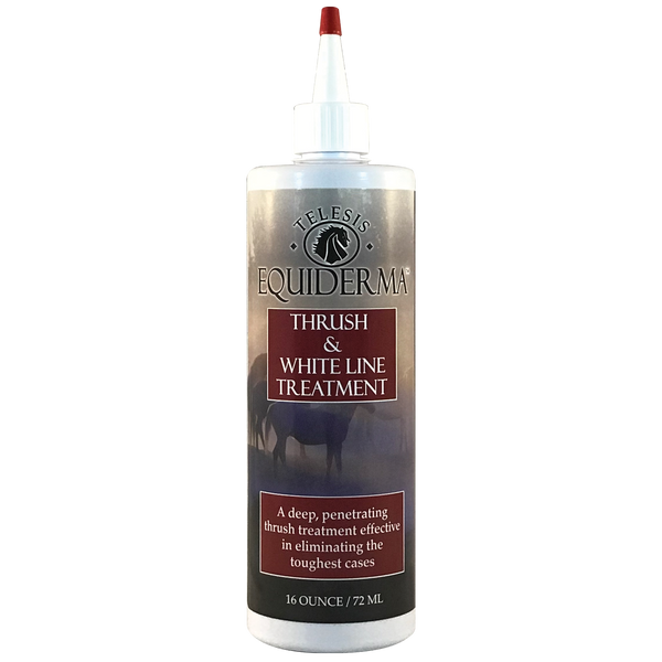 NEW PRODUCT!   Thrush & White Line Treatment
