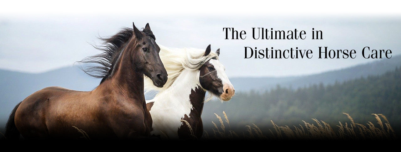 Equiderma - The World's Best Equine Products