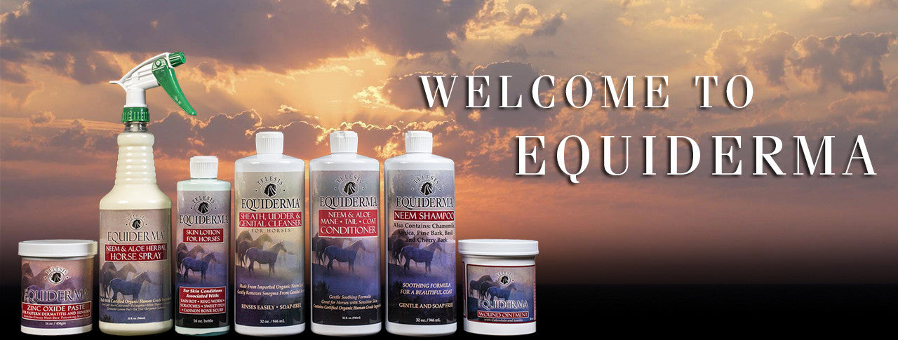 Welcome To Equiderma