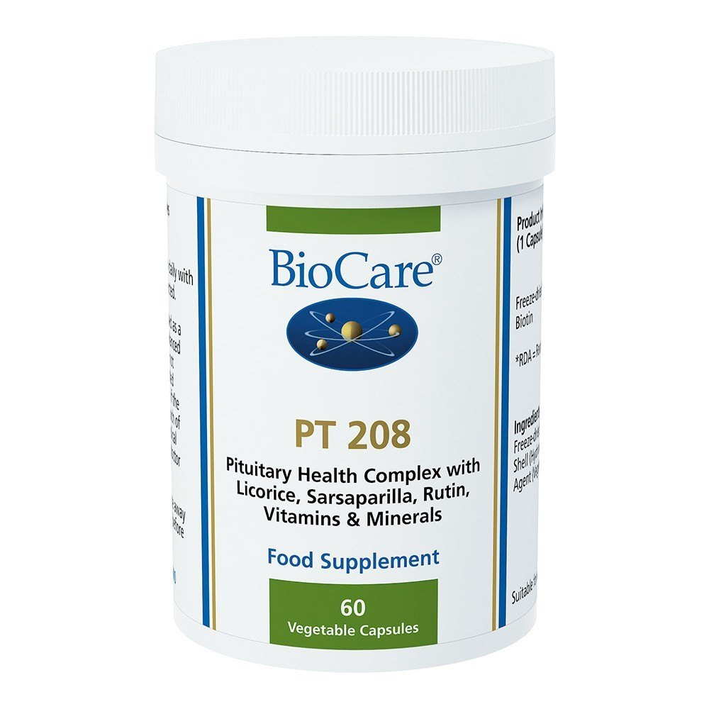 BioCare PT 208 Energy Support 60 Capsules - Lifestyle Labs