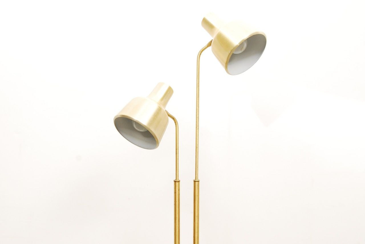 Twin headed brass floor lamp