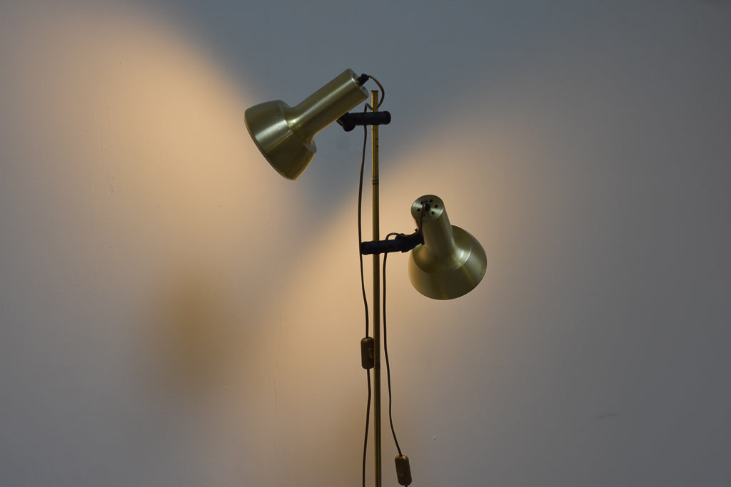 Twin-headed floor lamp with brass finish