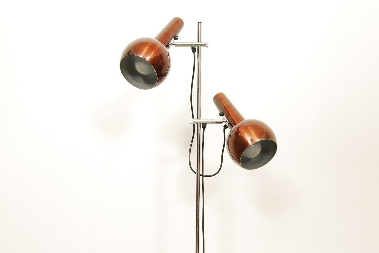 Twin-headed floor lamp
