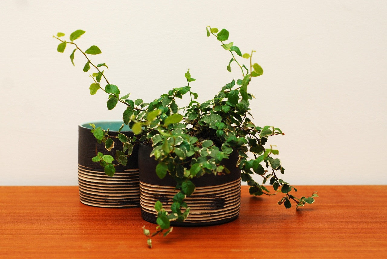 Small plant pot by Skandihus