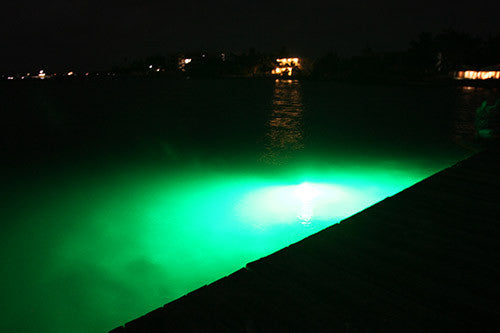 Green LED Fishing Stick Light