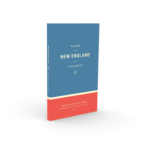 massachusetts inspired welcome bag gift new england book