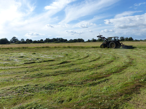 Mowing in a spiral, tractor in the background, curved swath in foreground