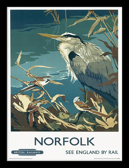 Norfolk (Heron & Bearded Tits by Talbot Kelly)