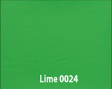 lime-pop-top-roof-canvas