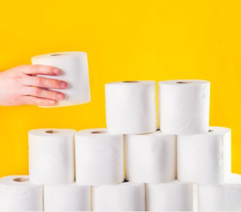 Best Recycled Toilet Papers Made In USA