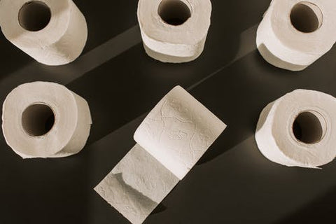 Recycled Natural Toilet Paper Rolls