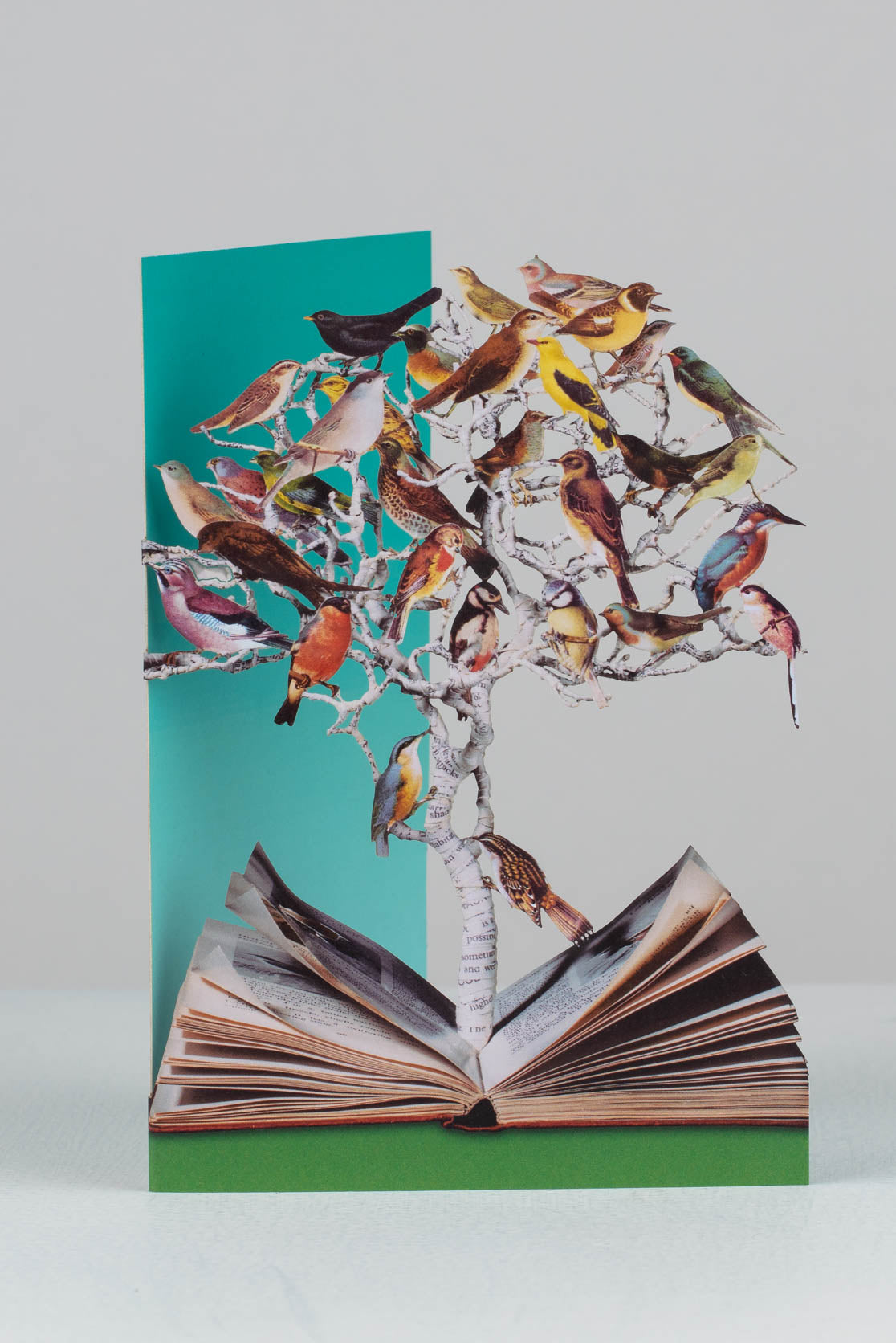 birds laser-cut greetings card by su blackwell for roger la borde
