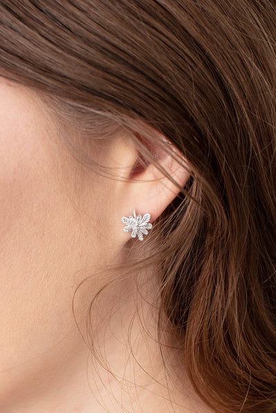 Aralia leaf stud earrings