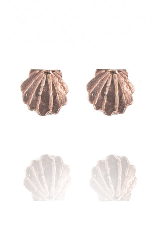 Clamshell Stud Earrings