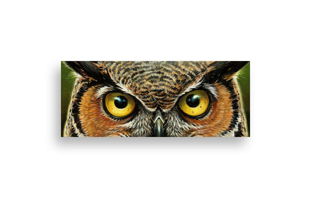 Great Horned Owl (Eyes Without A Face)
