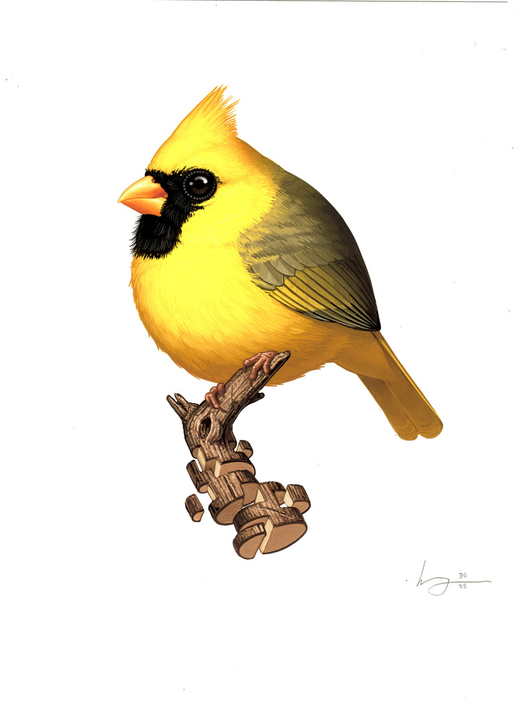 Mike Mitchell - Northern Cardinal (Yellow)