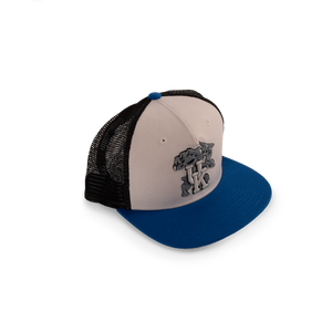 Kentucky Paradigm Hat