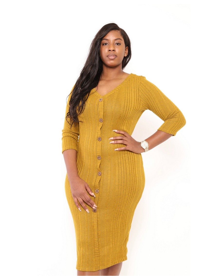 Cozy Fitted Dress(Plus Size)