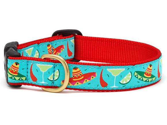 Cinco De Mayo Teacup Collar and Lead Set