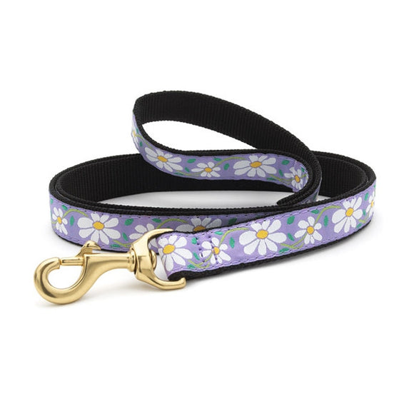Daisy Dog Lead from Absolutely Animals