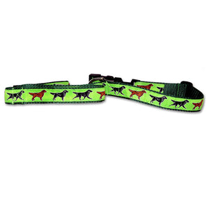 Flat Coat Retriever Dog Collar in Green from Absolutely Animals