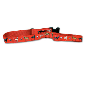 Labrador Retriever Dog Collar in Red from Absolutely Animals
