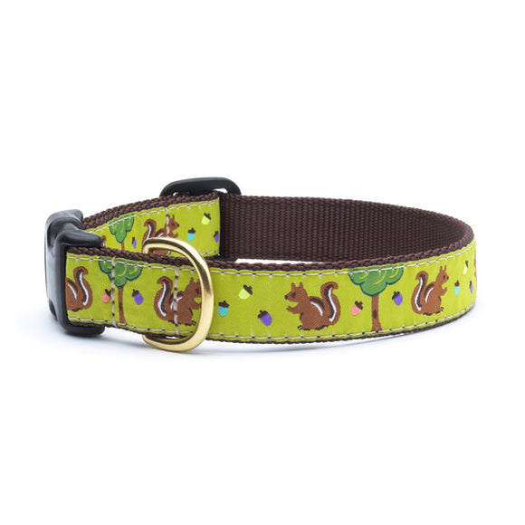 Nuts Dog Collars from Absolutely Animals