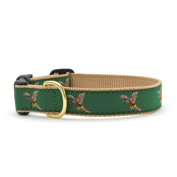 Pheasant Dog Collar from Absolutely Animals