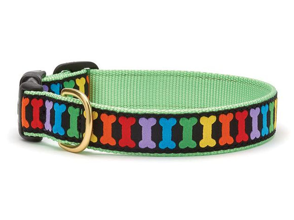 Rainbones Teacup Collar and Lead Set