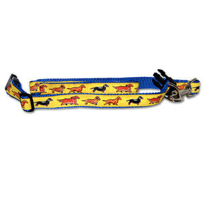 Dachshund - Standard Dog Collar in Yellow from Absolutely Animals