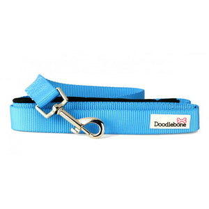 Cyan Blue Padded Lead