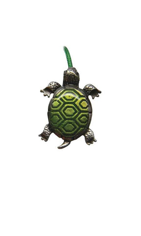 (02010) Bookflip's Turtle