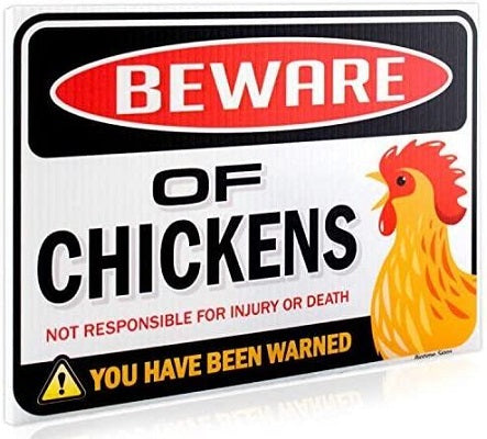 Beware of Chickens You Have Been Warned Corrugated Plastic Sign - Tina Velk Co
