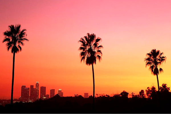 A CITY GUIDE TO LOS ANGELES
