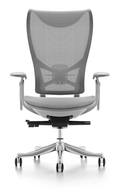 JD9 High Back Ergonomic Chair with Advanced Multi Angle Backrest Locking Quick Tilt Mechanism with Body Weight Tension Adjustment for Office & Home.