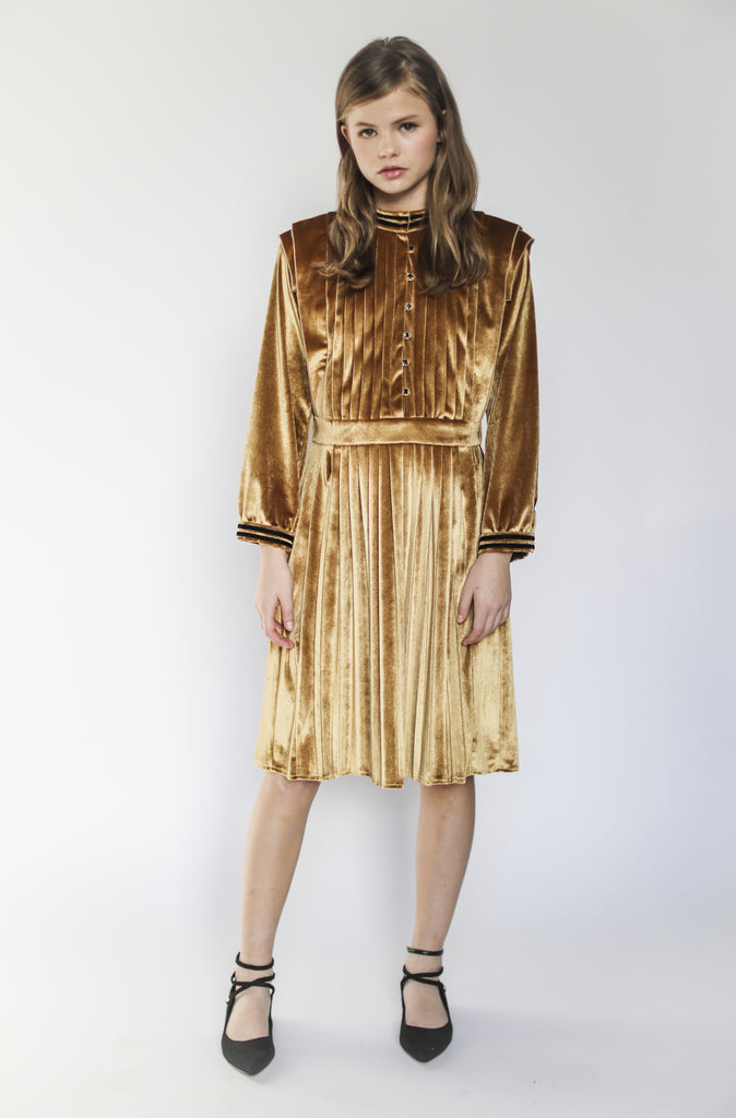 Vivienne dress (velvet gold)