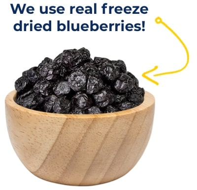 bowl of freeze dried blueberries