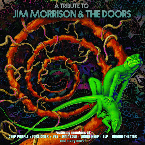 Various Artists - A Tribute To Jim Morrison & The Doors - LP