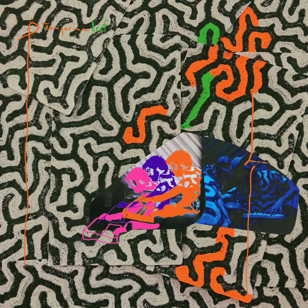 Animal Collective - Tangerine Reef - LP