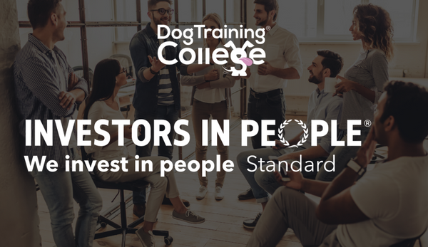 Dog Training College gains Investors in People Accreditation