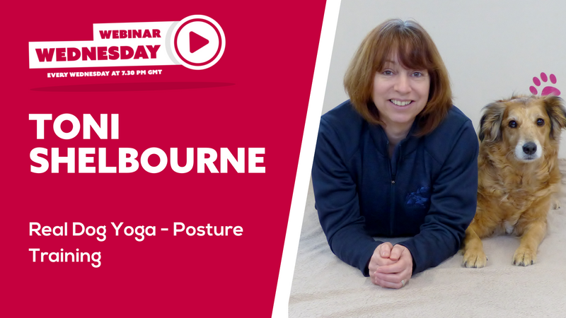 Real Dog Yoga - Posture Training