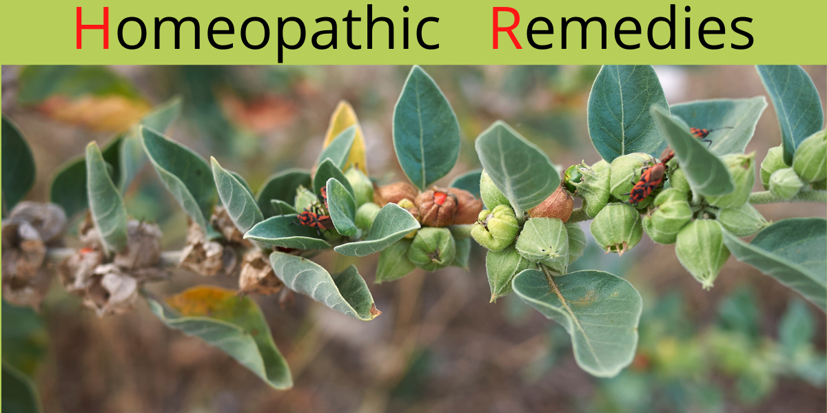 Homeoppathic Remedies Vitamins and Supplements