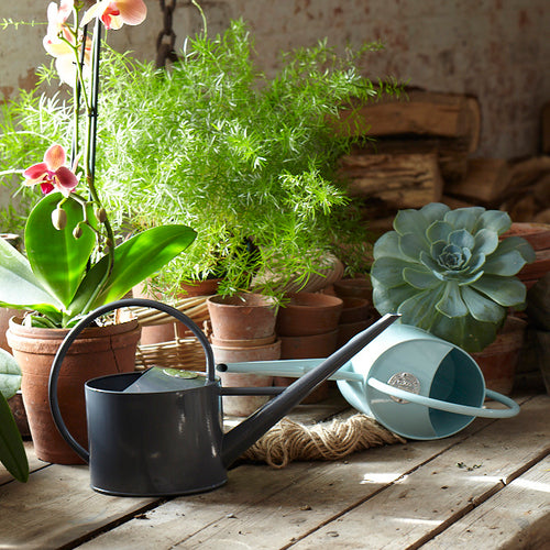 Sophie Conran Watering Can