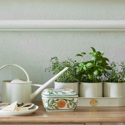 Sophie Conran Buttermilk Herb Pots Set of Three