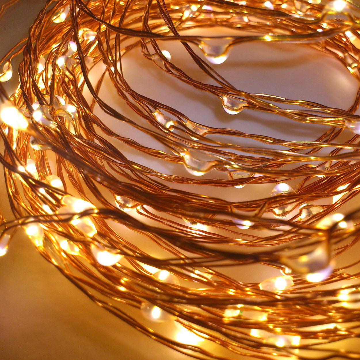 Seed Lights - 20m Copper - Plug in