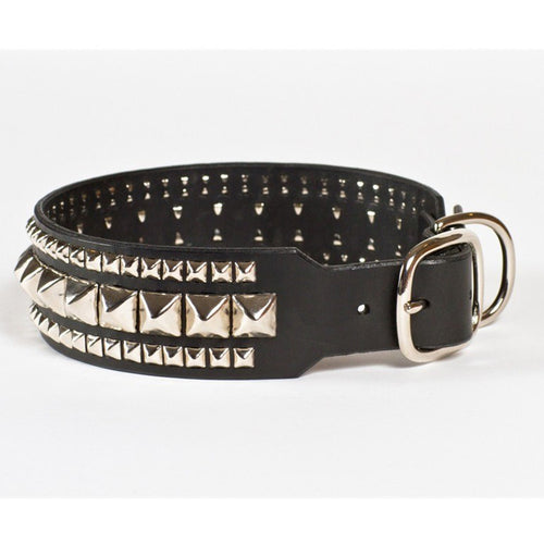 "Mo'woof ""The Gladiator"" Dog Collar"