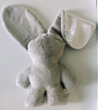 Load image into Gallery viewer, Lily and Jack Snuggle Bunny
