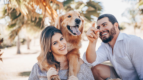 Guide to new Pet Parents for a Healthy and Happy fur baby