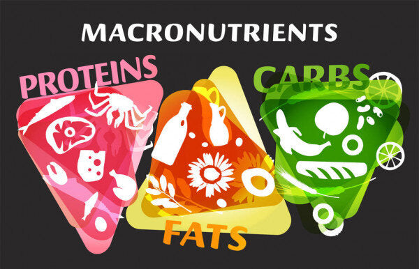 The Real Big 3: Macronutrients